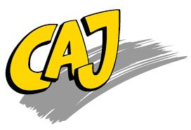 CAJ – Jugendverband bietet Möglichkeit sich hauptamtlich zu engagieren
